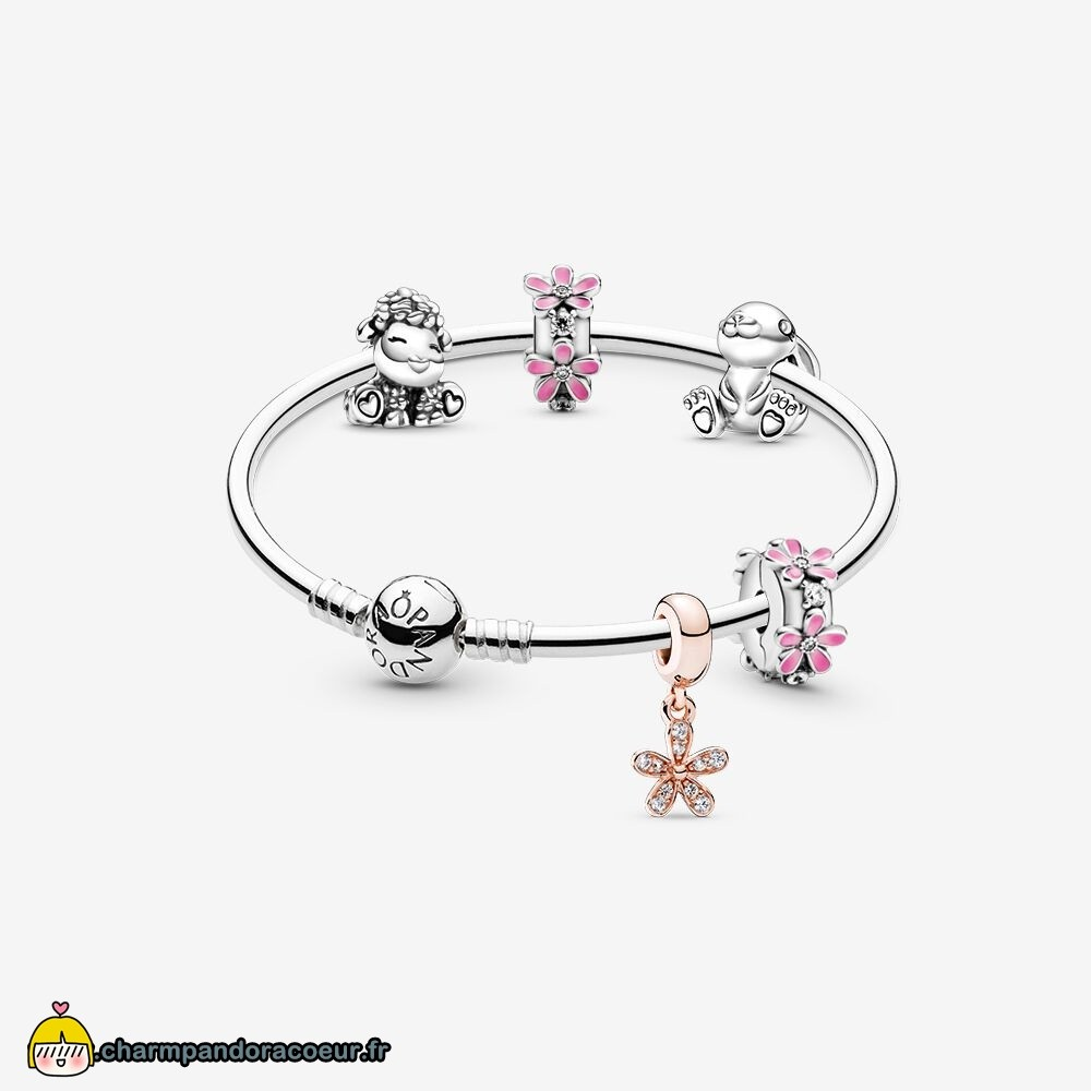 Nouvelle Collection Pandora Amis De Printemps Bracelets Ensemble